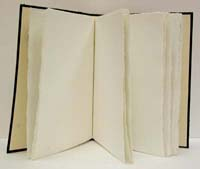 870cdaff5e25 Cahiers, carnets, livres blancs, livres d or, livres d heures, blocs